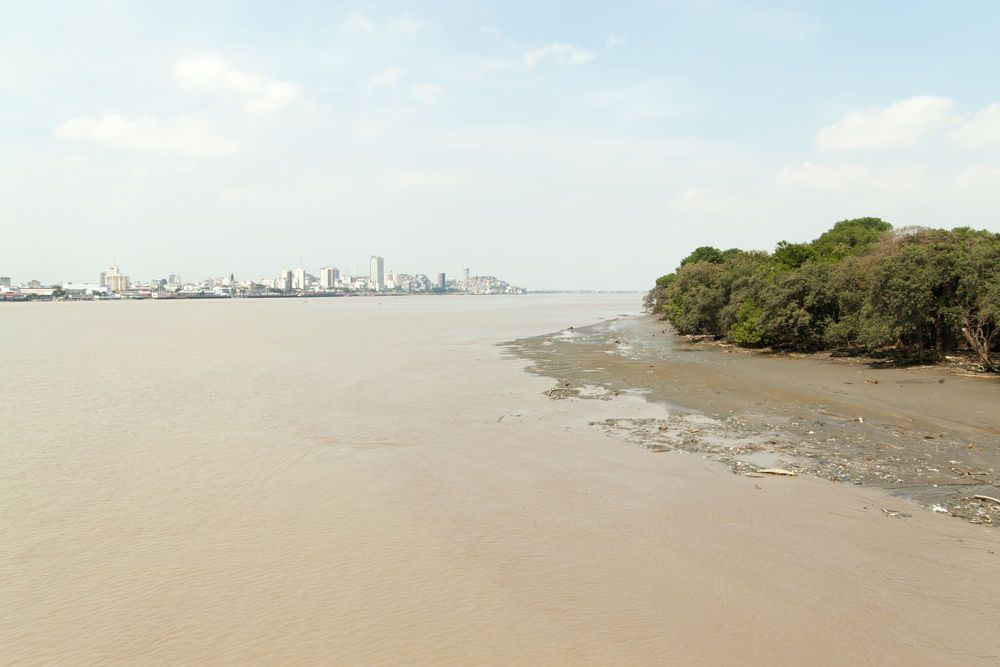 Ecuador: Guayaquil, Ecuador :: The skyline of Guayaquil city from the perspective of a neighbouring island. More Info