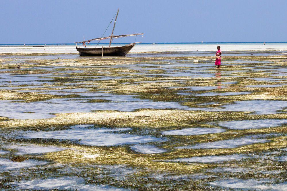 A young girl walks along the beach in Zanzibar, Tanzania