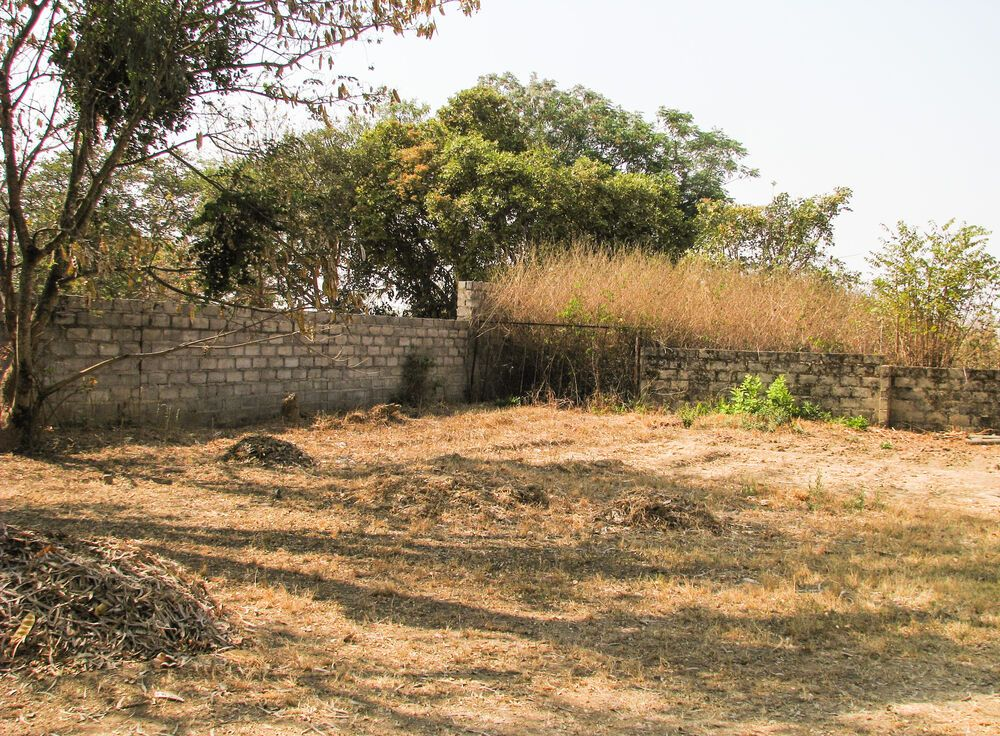 Zambia: Dry leaves cover the grounds around Subilo House More Info