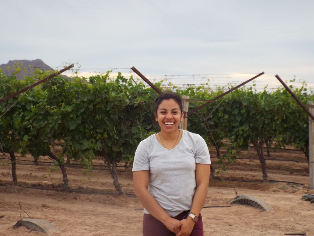 Mexico: Missionary standing in a grape field. She works sharing the gospel in a farming village. More Info