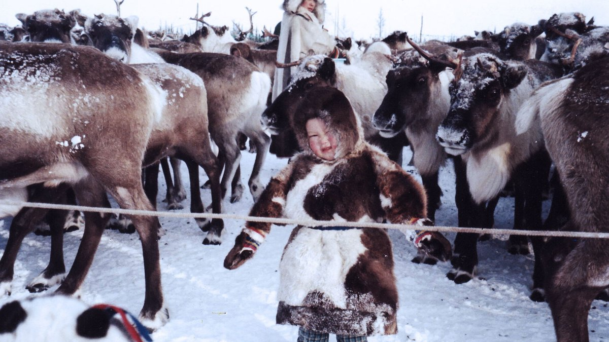Entering a reindeer herder's world