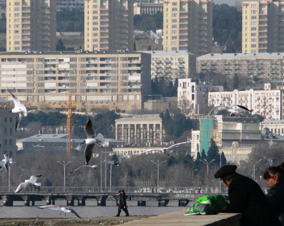 Caucasus: at the waterfront, couple watching seagulls in the early morning, city apartment blocks in background More Info