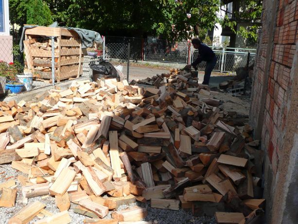 Bosnia & Hercegovina: OM Bosnias Bihac team was encouraged by the great response from donors this year. By the middle of November, a hundred households had already received their firewood!  More Info