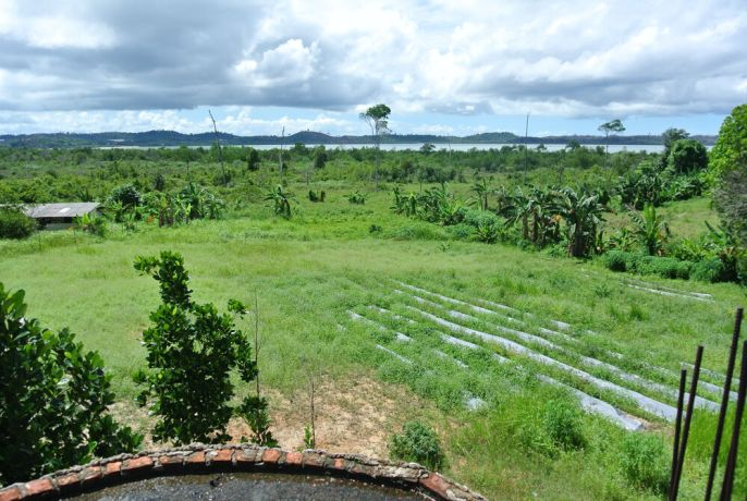 Indonesia: View of part of DreamAsia property in Northern Indonesia, from the roof of the training centre. Natural vegetation and overgrown farm plots are visible, with a view of the sea in the background.   More Info
