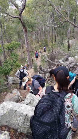 Australia: On Saturday August 22, 150 people gathered at Moogerah Dam for the inaugural Boonah Freedom Climb.  More Info