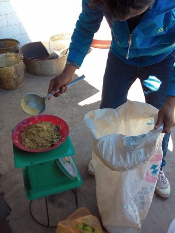 Far East: Learning enzyme-making in a Miao village (China) More Info
