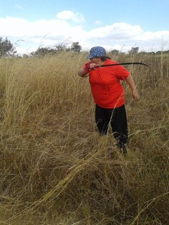 Brazil: Núbia cutting grass in Zambia, where the Mercy House is planned to be built. More Info