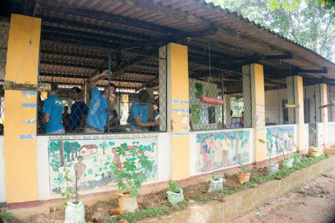 Sri Lanka: Colombo, Sri Lanka :: A team from Logos Hope does practical work. More Info