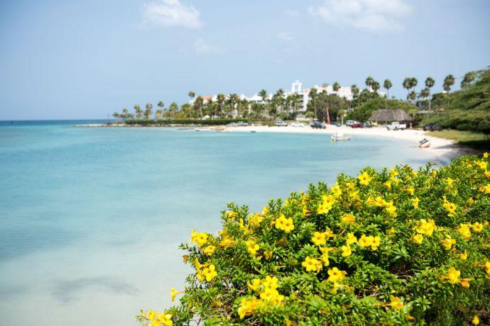 Aruba: Oranjestad, Aruna :: Landscape of Oranjestad, Aruba. More Info