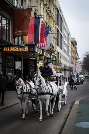 Austria: A Fiaker (horse-drawn cab) in Vienna - sightseeing for tourists. More Info