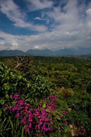 El Salvador: The rugged and beautiful landscape of El Salvador.  Photo by Garrett N More Info