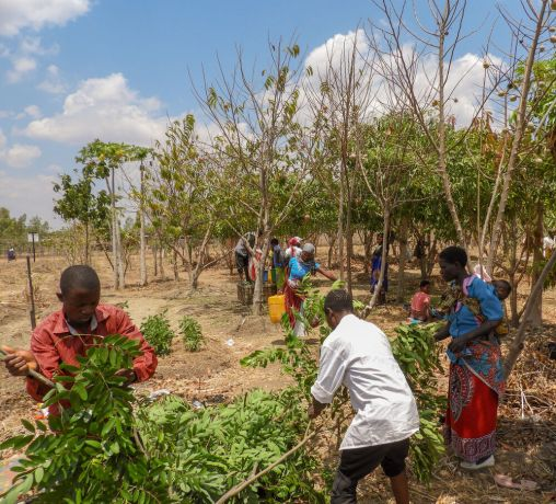 Malawi: Foundations for Farming - training about compost becomes practical More Info