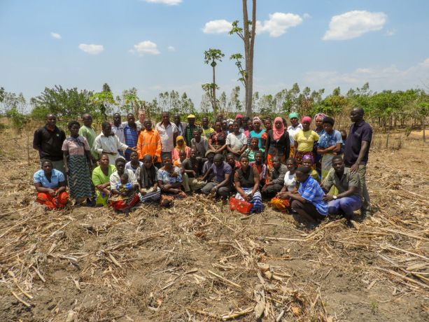 Malawi: Foundations for Farming - our new Crown Stewardship graduates putting their new knowledge into action by training others. More Info