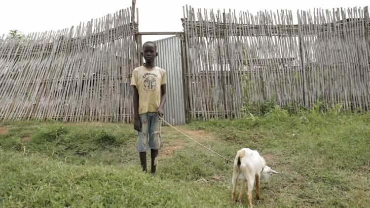 South Sudan: Children take care of the goats in the villages of South Sudan.  Photo by Jacob Carter More Info