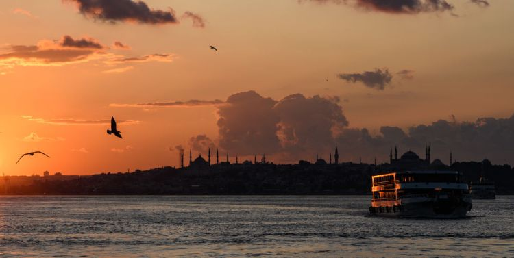 Turkey: Sunset on the Bosphorus river in Turkey with birds, a very and a mosque silhouetted.  Photo by Garrett N More Info