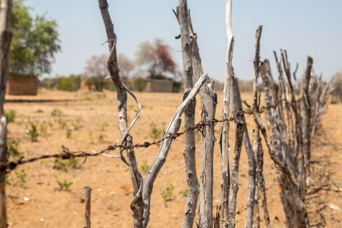 Namibia: A barbed-wire fence in a village in Namibia. Photo by Rebecca Rempel. More Info
