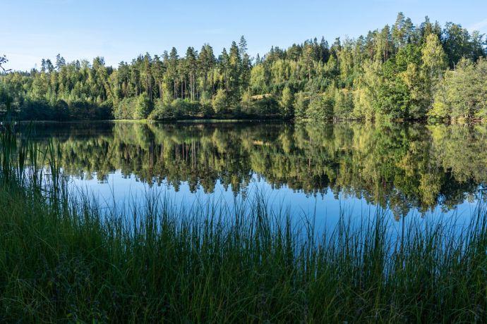 Sweden: Small dam called Hällstorpsdammen outside of Jönköping More Info