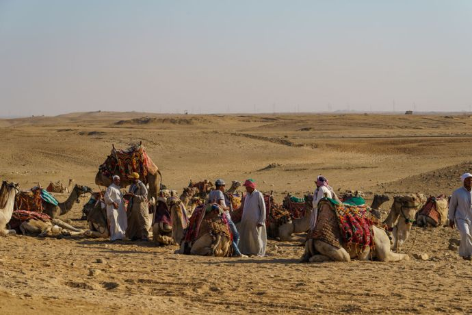 North Africa: Camels travel through the desert in North Africa.  Image by Garrett N More Info
