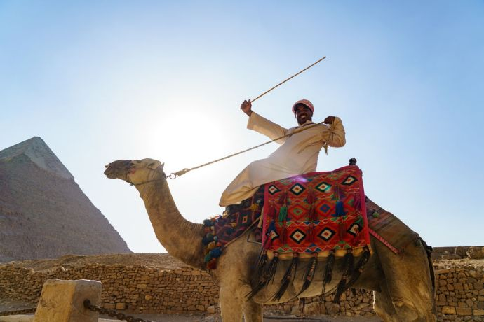 North Africa: Camels bring visitors through the pyramids.  Image by Garrett N More Info