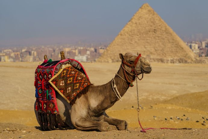 North Africa: The iconic Egyptian scene welcomes visitors.  Image by Garrett N More Info