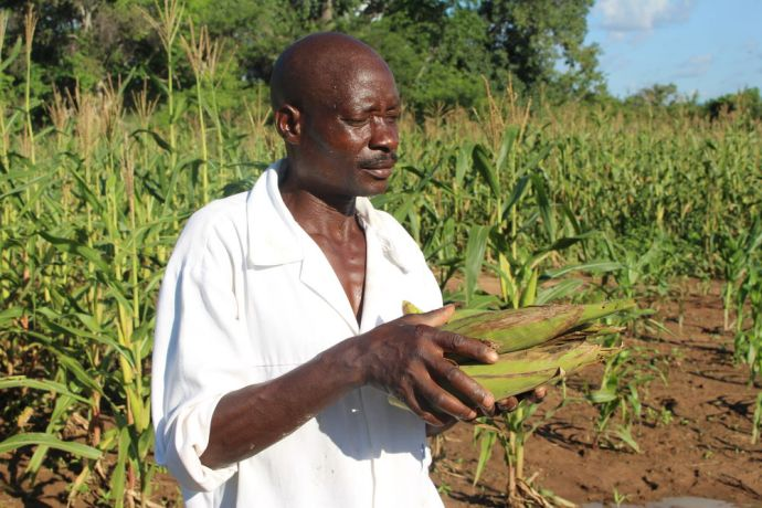 "Zimbabwe: Lending a helping hand: Julius selflessly helped Stella and Margaret implement the Foundation for Farming principles. ""A healthy village makes everyone happy,"" Julius said. More Info"