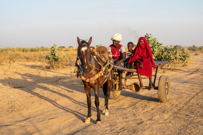 Africa: Family on a mule cart in north-central Africa. Photo by Rebecca  R. More Info