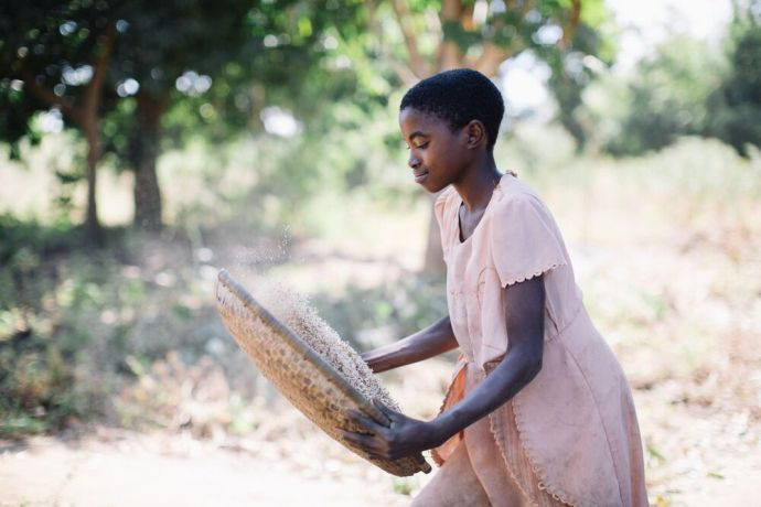 Malawi: A young girl tosses rice in a basket to remove bits of dirt and chaff. Photo by Doseong Park. More Info