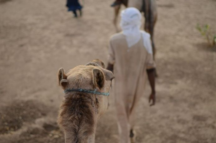 Africa: People ride camels through the desert in Africa. Photo by Andrew Fendrich More Info