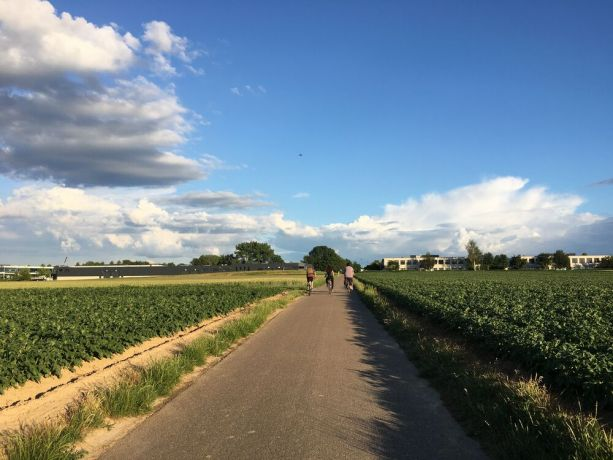 Belgium: Friends riding bikes in Belgian fields. Photo by Michelle Veliz. More Info