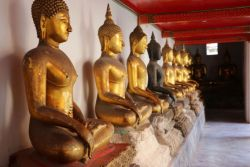 Row of Buddha statues in the temple of the reclining Buddha, one of the most famous Buddhist temples in Bangkok, Thailand.