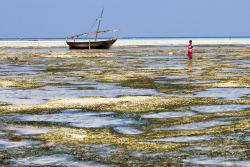 A young girl walks along the beach in Zanzibar, Tanzania