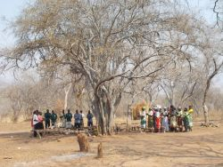 A church gathers under a tree for worship in Kanyemba, Zimbabwe