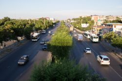 Traffic flows on a wide tree-lined city street in Central Asia.