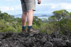 A hiker looks out over a scenic view from an island off the coast of Auckland, New Zealand.