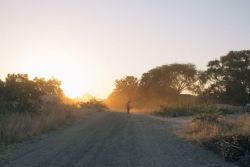 A woman walks down a road in Namibia at sunset.