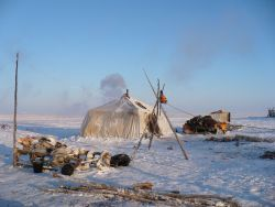 A reindeer herders' camp belonging to the Chukchi, an indigenous people group living in Siberia, Russia.